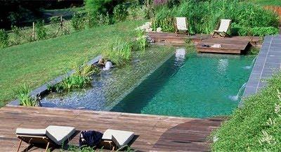 una piscina natural es un hbrido entre un estanque ornamental y una piscina convencional en las ecolgicas la depuracin se produce gracias a una accin - Piscinas Ecologicas
